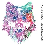 the head of a wolf. drawing by... | Shutterstock .eps vector #720154147