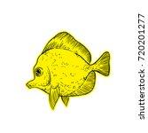 bright tropical sea fish  ... | Shutterstock .eps vector #720201277