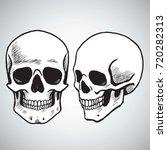 hand drawn skull set   Shutterstock .eps vector #720282313