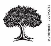 tree vector illustration... | Shutterstock .eps vector #720493753