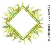 fern frond bracken rhombus... | Shutterstock .eps vector #720569533