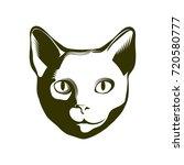 portrait of a cat. vector... | Shutterstock .eps vector #720580777