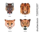 vector polygonal animals... | Shutterstock .eps vector #720592207