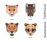 vector polygonal animals... | Shutterstock .eps vector #720592213