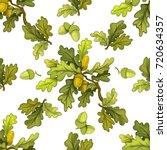 seamless pattern from oak tree... | Shutterstock .eps vector #720634357