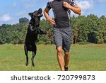 man running with dog in the... | Shutterstock . vector #720799873