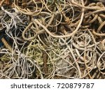 Small photo of Many sizes of hemp rope entangle together on the floor.