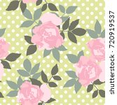 hand drawn pink roses  vector... | Shutterstock .eps vector #720919537