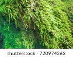 small waterfall in mountain... | Shutterstock . vector #720974263
