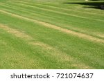 lawn care | Shutterstock . vector #721074637