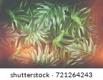 beautiful tropical leaves ... | Shutterstock . vector #721264243