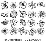 flower set | Shutterstock .eps vector #721293007