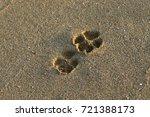 footprints in the sand | Shutterstock . vector #721388173