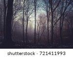 dark forest in a misty autumn...   Shutterstock . vector #721411993