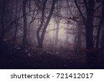 dark forest in a misty autumn...   Shutterstock . vector #721412017