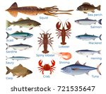 commercial fish and shellfish... | Shutterstock .eps vector #721535647