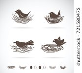 vector of bird and nests on... | Shutterstock .eps vector #721580473