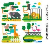 zoo animals and birds cartoon ... | Shutterstock . vector #721596913