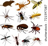 pests icon   insects  scorpion... | Shutterstock .eps vector #721597387