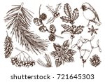 christmas elements collection.... | Shutterstock .eps vector #721645303