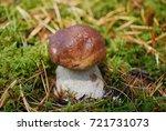 boletus edulis  english  penny... | Shutterstock . vector #721731073