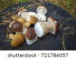 boletus edulis  english  penny... | Shutterstock . vector #721786057