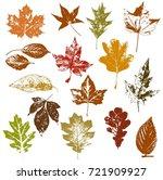 set of autumn leaves  maple ... | Shutterstock .eps vector #721909927
