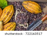 ripe cocoa pod and beans setup... | Shutterstock . vector #722163517