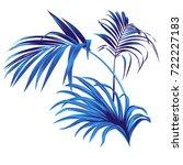 set of vector tropical leaves....   Shutterstock .eps vector #722227183
