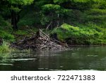 beaver lodge on a lake  trees... | Shutterstock . vector #722471383