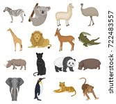 ostrich emu  crocodile  giraffe ... | Shutterstock .eps vector #722483557