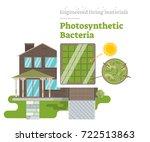 photosynthetic bacteria  ...