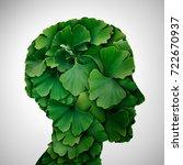 ginkgo biloba leaf head as a... | Shutterstock . vector #722670937