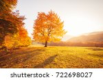 awesome image of the shiny... | Shutterstock . vector #722698027