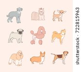 various dog breeds line drawing ... | Shutterstock .eps vector #722815963