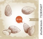 hand drawn sketch style almond... | Shutterstock .eps vector #722835607