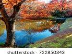 autumn scenery of beautiful... | Shutterstock . vector #722850343