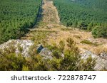 Small photo of Wide angle of huge firebreak and pine tree forest in the mountain