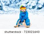 little boy enjoying a sleigh...