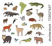 animals of south america line... | Shutterstock . vector #723027637