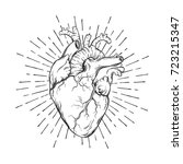 hand drawn human heart with... | Shutterstock .eps vector #723215347