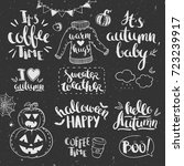 autumn lettering set hand drawn ... | Shutterstock .eps vector #723239917