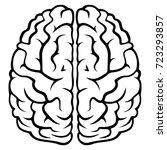 the human brain   Shutterstock .eps vector #723293857