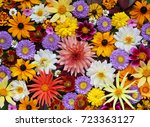 Stock photo beautiful autumn floral background for greeting or postcards texture of various garden flowers 723363127