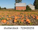 Old Brick Red Barn And Pumpkin...
