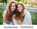 portrait of identical ginger... | Shutterstock . vector #723502963
