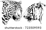 set of vector drawings on the... | Shutterstock .eps vector #723509593