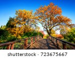 wooden bridge in an idyllic... | Shutterstock . vector #723675667