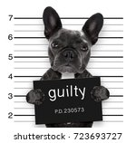 criminal mugshot  of french... | Shutterstock . vector #723693727