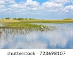 Florida Wetland  Airboat Ride...